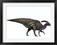 Framed Parasaurolophus, a herbivorous dinosaur from the Cretaceous period