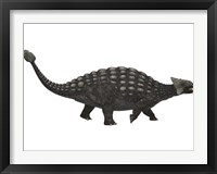 Framed Ankylosaurus, an armored dinosaur from the Cretaceous Period