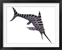 Framed Eurhinosaurus, an extinct genus of ichthyosaur
