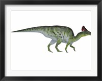 Framed Olorotitan, a duckbilled dinosaur from the Cretaceous Period