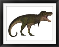 Framed Tyranosaurus Rex, a carnivore of the Cretaceous Period