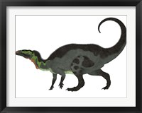 Camptosaurus, a herbivorous dinosaur from the Late Jurassic Period Framed Print
