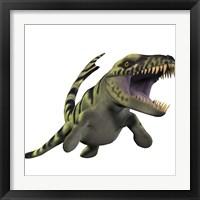 Framed Dakosaurus, white background
