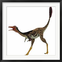 Framed Mononykus, a theropod dinosaur from the late Cretaceous