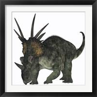 Framed Styracosaurus, a herbivorous ceratopsian dinosaur