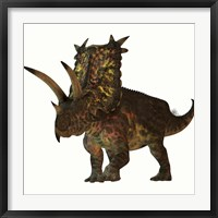 Framed Pentaceratops, a herbivorous dinosaur from the Cretaceous Period