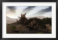Framed Herd of Xenoceratops foremostensis from the Cretaceous Period