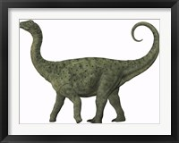 Framed juvenile Saltasaurus sauropod dinosaur of the Cretaceous Period