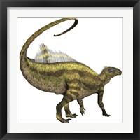 Framed Tenontosaurus dinosaur from the Cretaceous Period