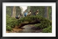 Framed group of Dodo birds crossing a natural bridge over a stream
