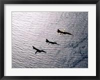 Framed F-5F Tiger II, F-5E Tiger II and A-4 Skyhawk