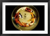 Framed Horse Globe, Chinese Handicrafts, China