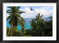 Framed Palm Trees of Anse Victorin Beach, Seychelles, Africa
