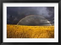 Framed Rainbow in mist, Maasai Mara Kenya
