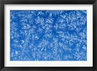 Framed Pattern of Winter Frost on Glass