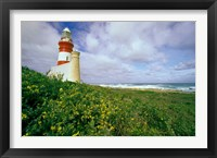 Framed South Africa, Cape Agulhas Lighthouse