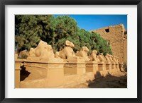 Framed Sphinxes, Temple of Karnak, Temple of Luxor, Avenue of Sphinxes, Luxor, Egypt