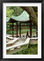 Framed Tai Chi Chuan in the Chinese Garden Pavilion at Kowloon Park, Hong Kong, China