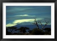 Framed Summit of Mount Kilimanjaro, Amboseli National Park, Kenya