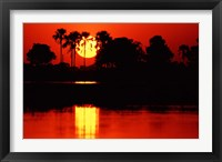Framed Tropical Sunset in North Central Botswana