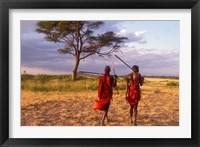 Framed Two Maasai Morans Walking with Spears at Sunset, Amboseli National Park, Kenya