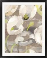 Framed Tulip Delight I