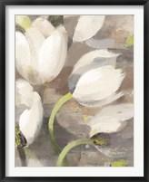 Framed Tulip Delight II