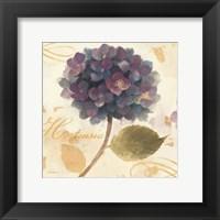 Framed Abundant Hydrangea II