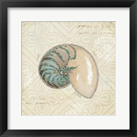 Framed Beach Treasures III