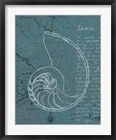 Coastal Blueprint V Dark Framed Print