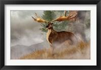 Framed Irish Elk stands in deep grass on a foggy hillside
