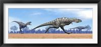 Three Aucasaurus dinosaurs running in the desert Framed Print