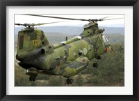 Framed CH-46 Sea Knight helicopter of the Swedish Air Force