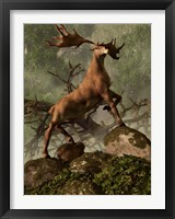 Framed Irish Elk stands proudly in a dense forest