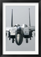 Framed Close View of F-15E Strike Eagle of the US Air Force