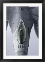 Framed F-16 Fighting Falcon of the Portugese Air Force