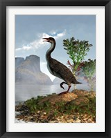 Framed Hesperornis on the shore of a lake looking around