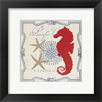 Framed Pacific Seahorse