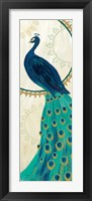 Framed Proud as a Peacock IV