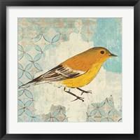 Framed Pine Warbler
