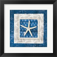 Framed Sea Shell IV on Blue