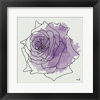 Framed Watercolor Floral IV