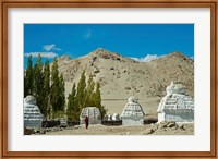 Framed White Stupa Forest, Shey, Ladakh, India