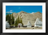 Framed White Stupa Forest, Shey, Ladakh, India