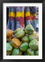 Framed Pile of Coconuts, Bangalore, India