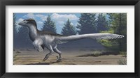 Framed mid-sized Cretaceous China deinonychosaur