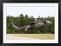 Framed US Army UH-60L Blackhawk helicopter landing at Florida Airport