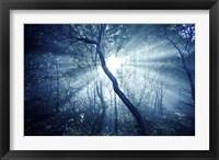 Framed Sun rays in a dark forest, Liselund Slotspark, Denmark