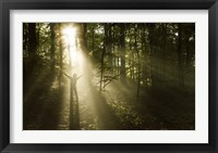 Framed Silhouette of a man standing in the sunrays of a dark, misty forest, Denmark
