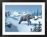 Framed Two large mammoths walking slowly on the snowy mountain